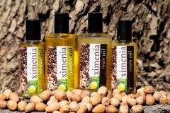Ximenia-oils